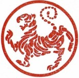 karate club logo
